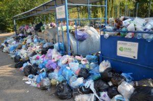 Что делать и куда жаловаться, если не вывозят мусор