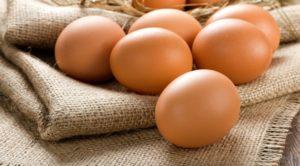 Сколько составляет срок годности яиц в различном виде