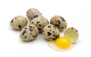 Срок годности перепелиных яиц